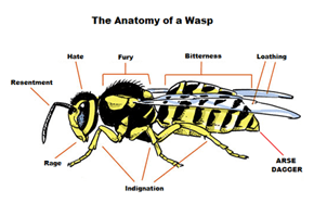 Wasps Are Horrible Creatures