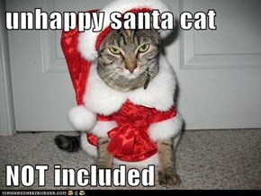 unhappy santa cat   NOT included