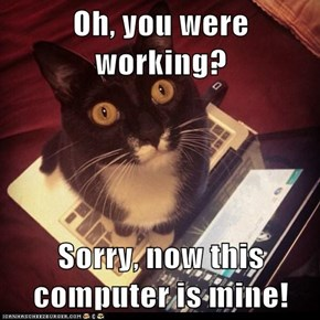 Oh, you were working?  Sorry, now this computer is mine!