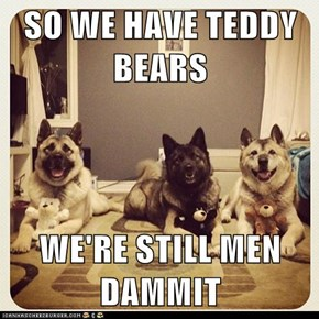 SO WE HAVE TEDDY BEARS  WE'RE STILL MEN DAMMIT