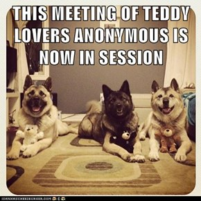 THIS MEETING OF TEDDY LOVERS ANONYMOUS IS NOW IN SESSION