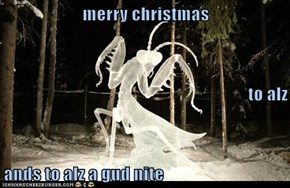 merry christmas to alz ands to alz a gud nite