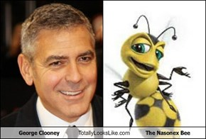 George Clooney Totally Looks Like The Nasonex Bee