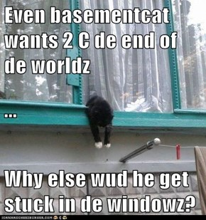 Even basementcat wants 2 C de end of de worldz ... Why else wud he get stuck in de windowz?