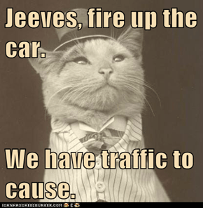 Jeeves, fire up the car.  We have traffic to cause.