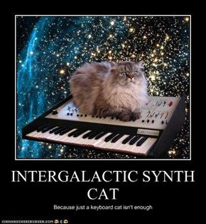 INTERGALACTIC SYNTH CAT
