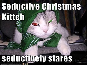 Seductive Christmas Kitteh  seductively stares