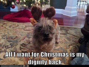 All I want for Christmas is my dignity back