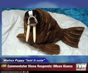 "Walrus Puppy ""isnt it cute""  - Commentator Diana Responds: iMean iGuess"