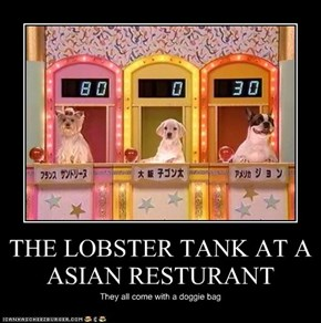 THE LOBSTER TANK AT A ASIAN RESTURANT