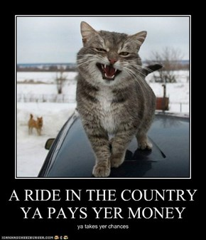A RIDE IN THE COUNTRY YA PAYS YER MONEY