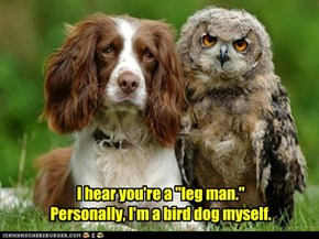 "I hear you're a ""leg man.""  Personally, I'm a bird dog myself."