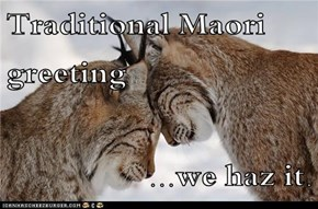 Traditional Maori greeting  ...we haz it.