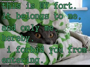 this is MY fort. it belongs to me, and only me. hereby,  i forbid you from entering.