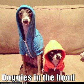 Doggies in the hood