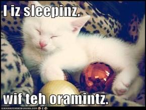 I iz sleepinz.  wif teh oramintz.