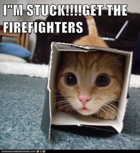 "I""M STUCK!!!!GET THE FIREFIGHTERS"