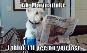 Ah, Marmaduke  I think I'll pee on you last