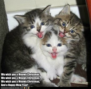 Meowy Christmas - Kitten Trio