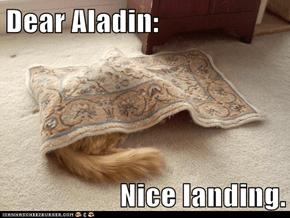Dear Aladin:  Nice landing.