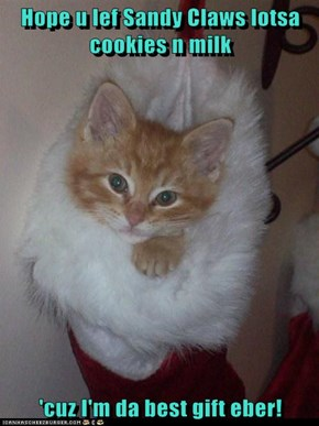 Hope u lef Sandy Claws lotsa cookies n milk  'cuz I'm da best gift eber!