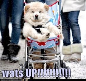 wats UP!!!!!!!!!!!