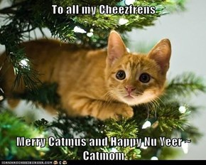 To all my Cheezfrens  Merry Catmus and Happy Nu Yeer ~ Catmom