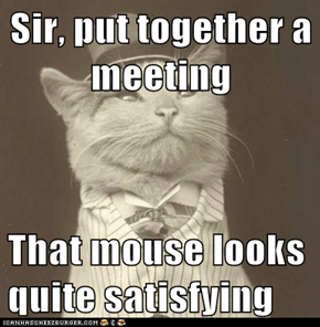 Sir, put together a meeting  That mouse looks quite satisfying