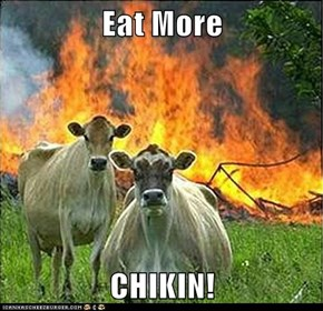 Eat More   CHIKIN!