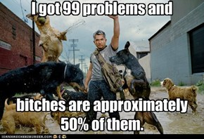 I got 99 problems and bitches are approximately 50% of them.