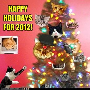 HAPPY HOLIDAYS FOR 2012!