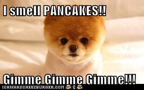 I smell PANCAKES!!  Gimme Gimme Gimme!!!