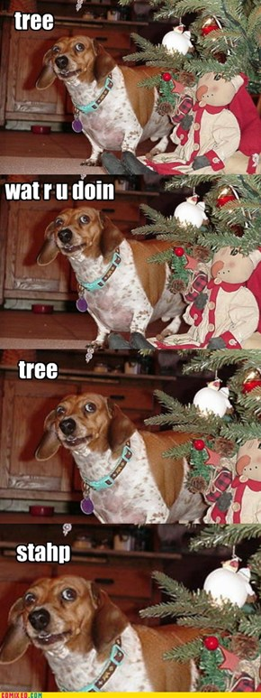 Christmas won't listen