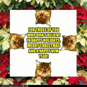 FOR THOSE OF YOU WHO DON'T BELIEVE IN HAPPY HOLIDAYS, MERRY CHRISTMAS AND A HAPPY NEW YEAR!