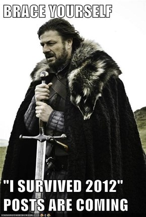 "BRACE YOURSELF  ""I SURVIVED 2012"" POSTS ARE COMING"