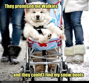 They promised me Walkies
