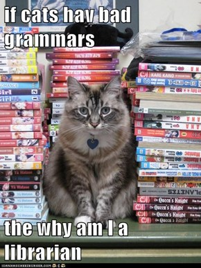 if cats hav bad grammars  the why am I a librarian