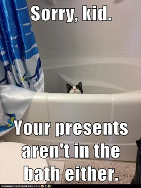 Sorry, kid.  Your presents aren't in the bath either.