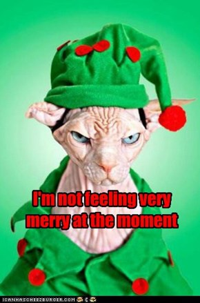I'm not feeling very merry at the moment