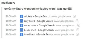 Dammit Lizard, My Browser History is RUINED