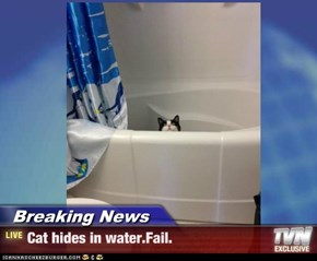 Breaking News - Cat hides in water.Fail.