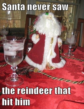 Santa never saw  the reindeer that hit him