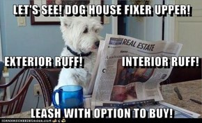 LET'S SEE! DOG HOUSE FIXER UPPER! EXTERIOR RUFF!                INTERIOR RUFF! LEASH WITH OPTION TO BUY!