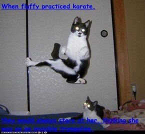 When fluffy practiced karate,  they would always stare at her, thinking she was on an invisible trampoline.