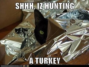 SHHH, IZ HUNTING  A TURKEY