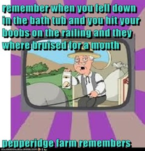 remember when you fell down in the bath tub and you hit your boobs on the railing and they where bruised for a month   pepperidge farm remembers