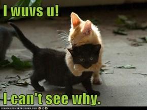 I wuvs u!  I can't see why.