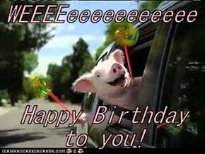 WEEEEeeeeeeeeeee  Happy Birthday to you!