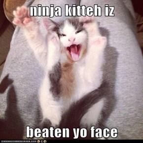 ninja kitteh iz  beaten yo face