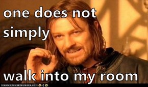one does not simply  walk into my room